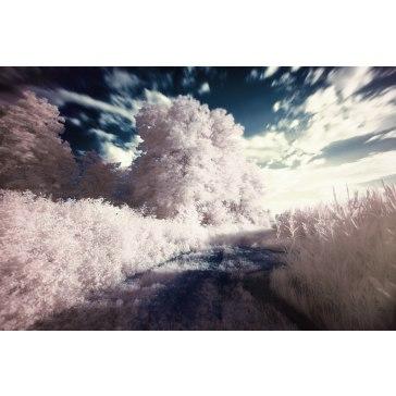 Infrared Filter for Fujifilm E550